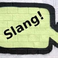 اصطلاحات عامیانه (Slang)